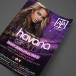 DJ Havana Brown at AJA Wiregrass Print Design by Ryan Orion Agency